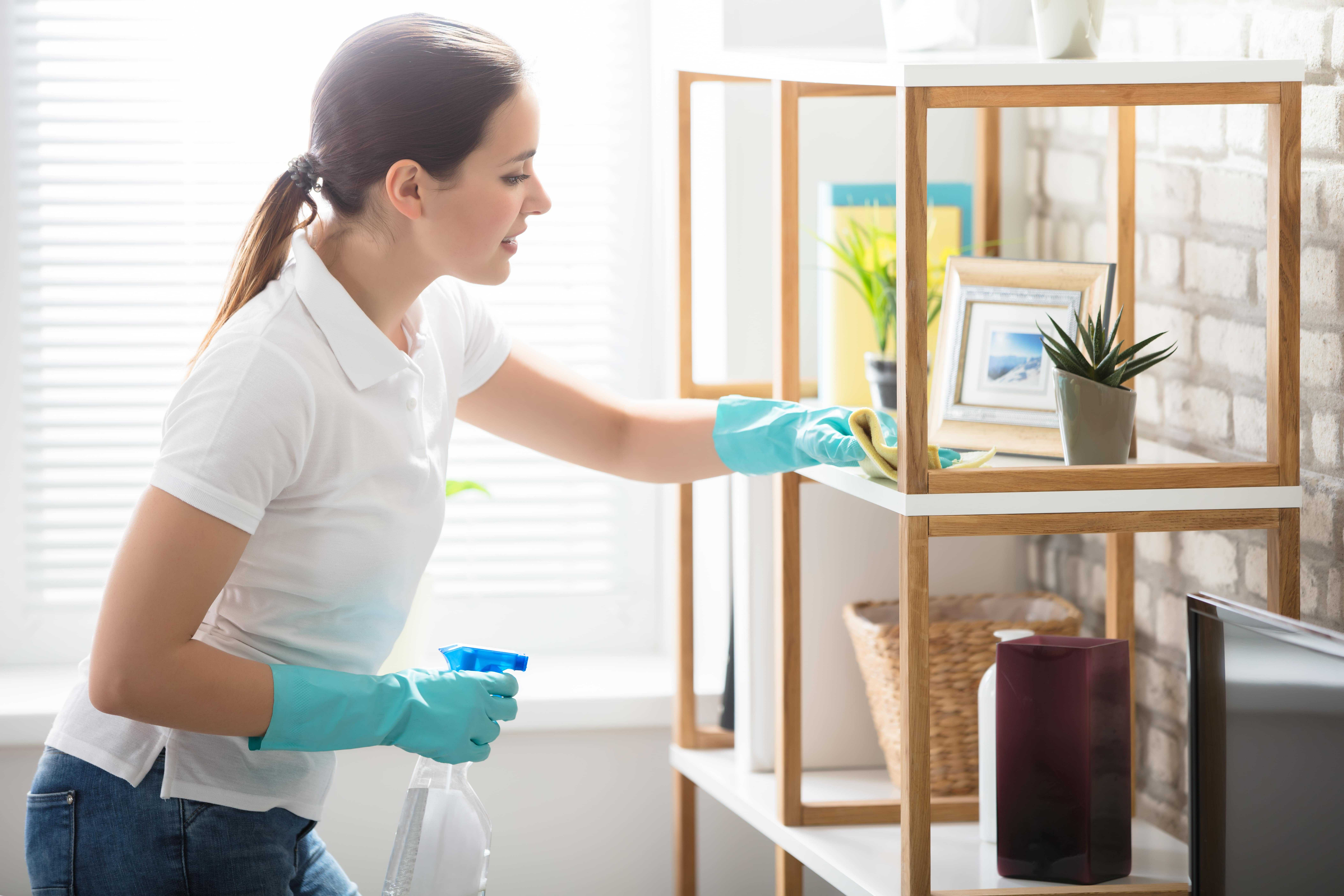 Want to Know How to Clean Your House Fast?