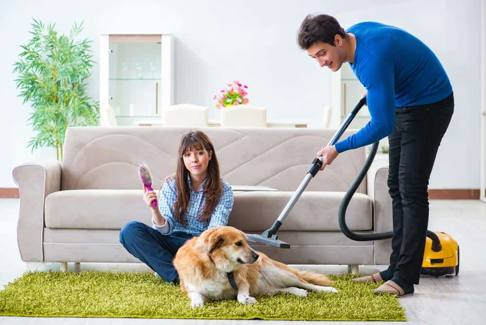 how to pick the best vacuum cleaners